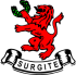Surgite Small Logo
